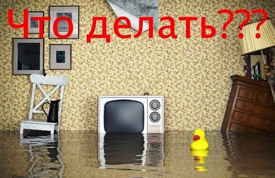 что делать если виноват жэк при затоплении квартиры